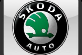 Корректировка пробега Skoda 2016